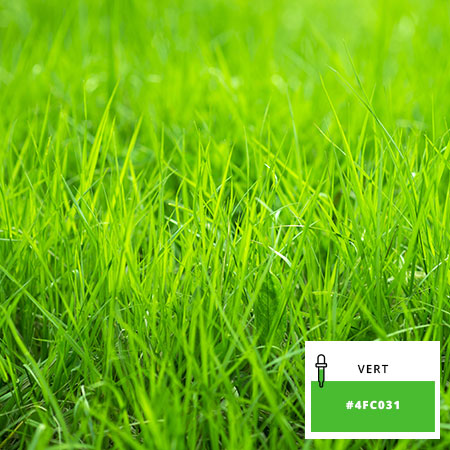 &vert