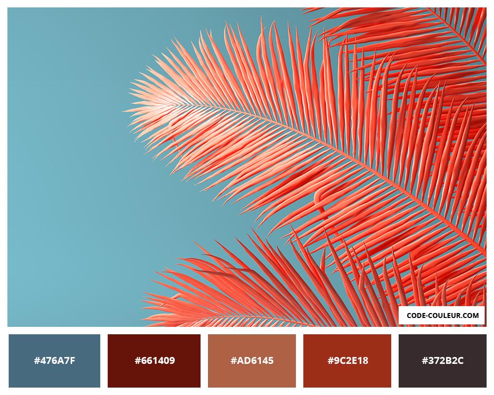 Comment Faire La Couleur Saumon corail - couleur corail