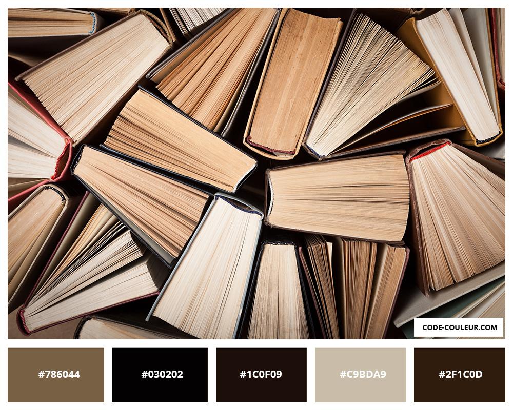 CODE COULEUR] Dictionnaire des couleurs