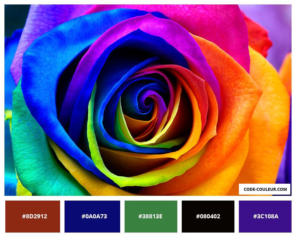 palette de couleurs 1. Black Bedroom Furniture Sets. Home Design Ideas