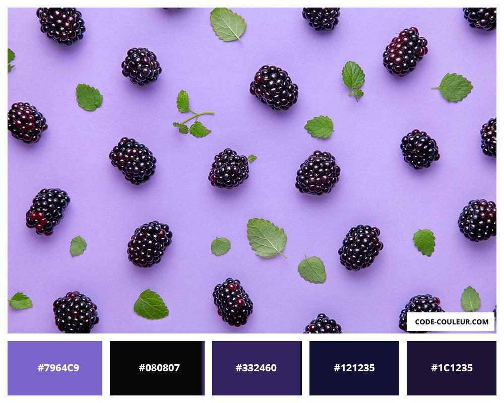 palette de couleurs 3. Black Bedroom Furniture Sets. Home Design Ideas
